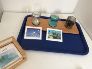 """In this tray, the students find bottles of """"air,"""" """"water,"""" and """"land"""" and sort corresponding animal cards accordingly."""